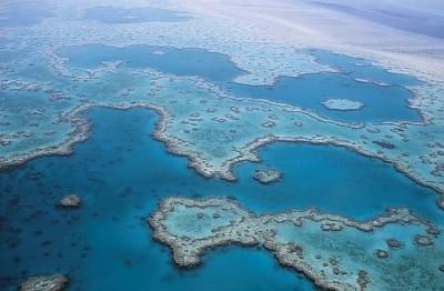 great-barrier-reef-527987_640