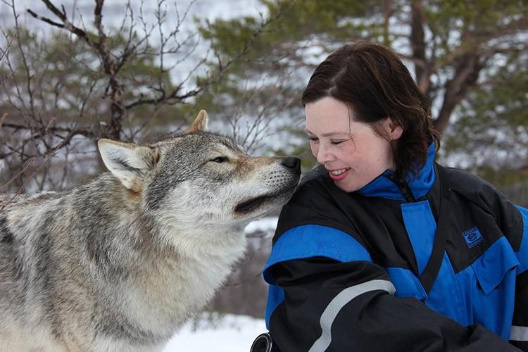Credit: Polar Park