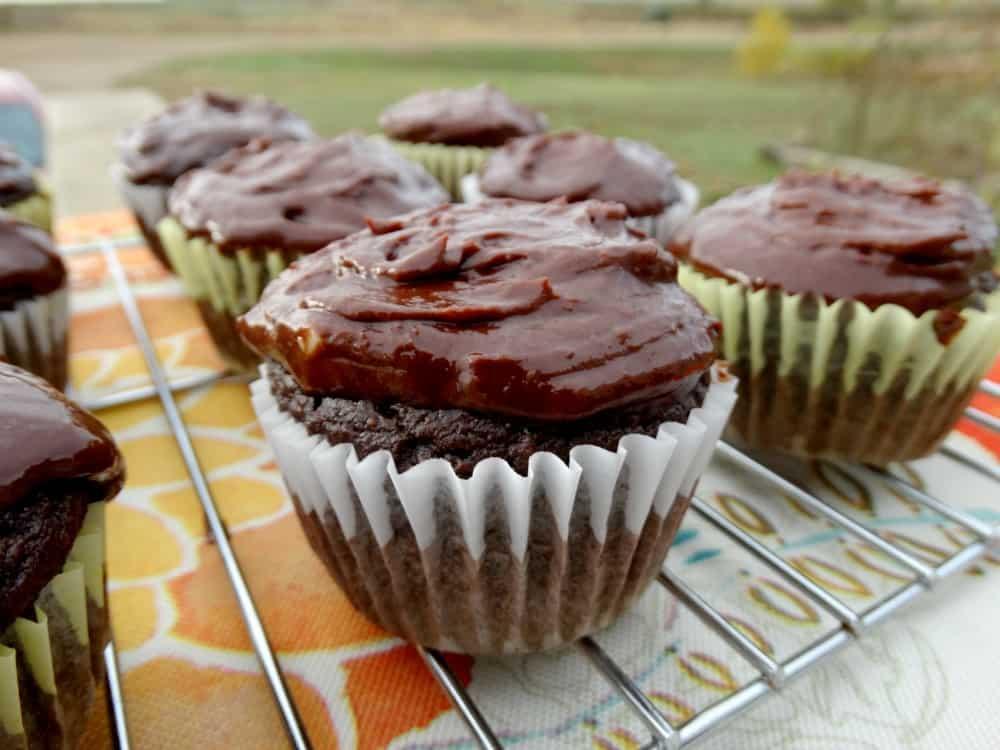 Grain-free, Dairy-free, Gluten-free {Paleo} cupcakes that still taste delicious! Credit: BloomforLife.org