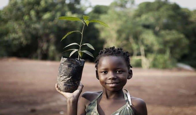 GreenEarthAfrica