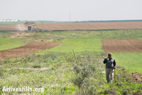 A Palestinian farmer walks through fields near Gaza's eastern border, Al Montar, February 17, 2014. An Israeli military post is seen in the distance to the left, with the border indicated by the dark green areas passing through it. Credit: Ryan Rodrick Beiler/Activestills.org