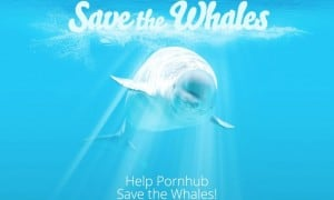 Photo: Pornhub Save The Whales