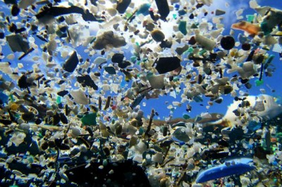 "Humans Have Thrown ""Away"" So Much Plastic Into Oceans That We Are Now Eating It"