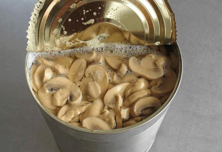 Fake Mushrooms