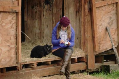 Shelter Finds Homes For Cats By Giving Them Jobs