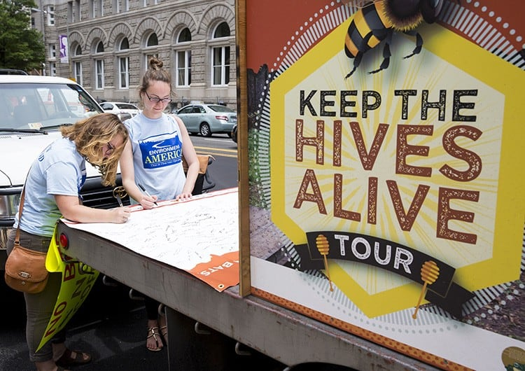 Credit: 'Keep The Hives Alive'