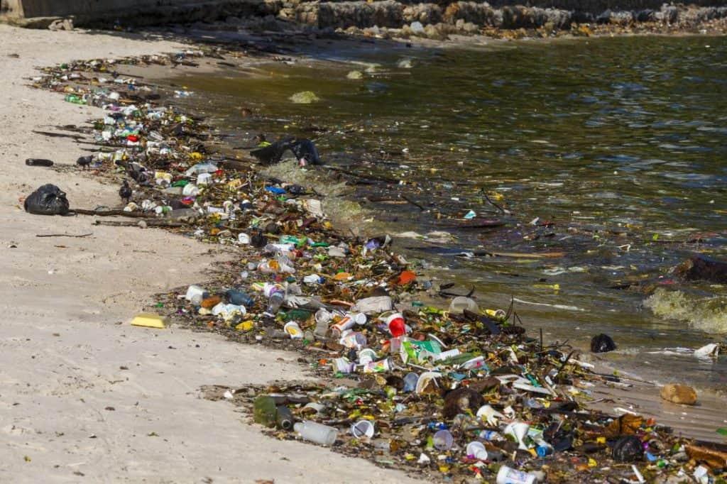 Guanabara bay polution