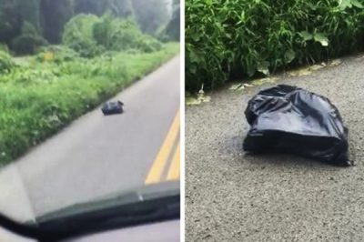 This Driver Was Astonished When She Opened This Moving Trash Bag In The Road