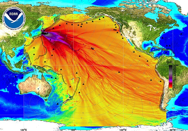 Fukushima Radiation Has Contaminated The Entire Pacific Ocean And - Japan map radiation