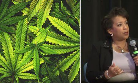 lynchmarijuananaturalsociety