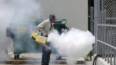 Pesticide Used To Control Zika Mosquitoes Causes Birth Defects And Autism