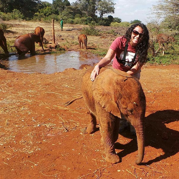 Credit: DSWT