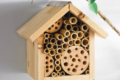 How To Build A Cute Bee Hotel To Help Out Their Population