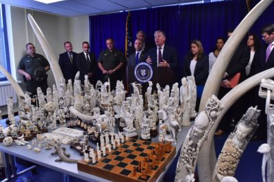 NYC Antique Shop Busted With $4.5 Million In Illegal Ivory
