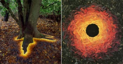 Man Uses Nature To Create Wondrous Works Of Arts – And They're Stunning