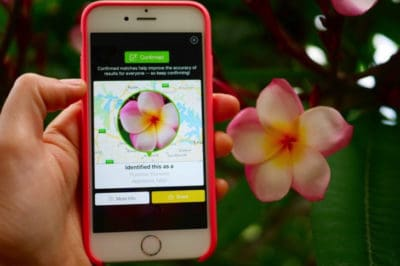 "New App Aims To Be The ""Shazam"" For Plants By Identifying Species With Just A Photo"