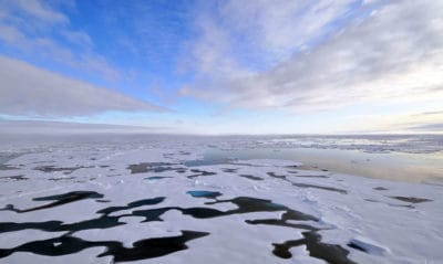 Arctic Sea Ice Levels Are Currently At Their Lowest In History