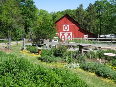 You Could Win This 13-Acre Organic Farm By Writing A 200-Word Essay