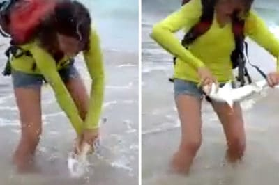 Tourists Take Selfie With A Baby Shark, But This Time The Shark Won