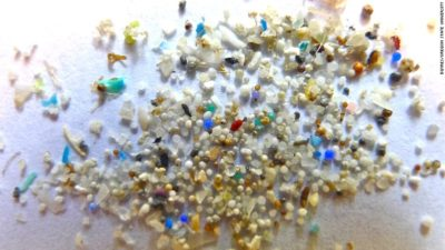 New Zealand To Ban Plastic Microbeads By 2018