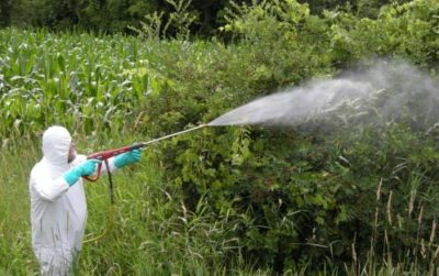 U.N. Report Reveals Agri-Chemicals As Unnecessary Evil: Attributes 200,000 Deaths Annually To Pesticide Poisonings