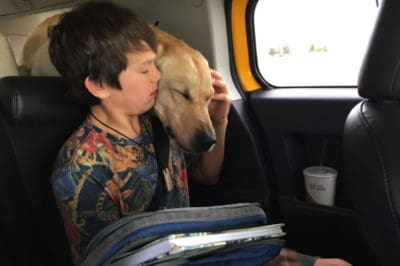 Family Dog Dead And Teen's Life Threatened After U.S. Government Did This