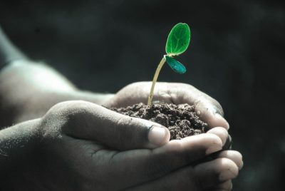 Scientific Studies Reveal How Soil Can Help Depression