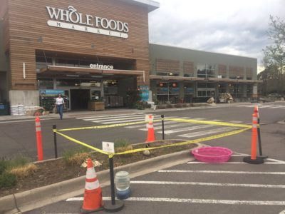 Whole Foods Goes Above And Beyond To Protect Goose Who Laid Eggs In Parking Lot