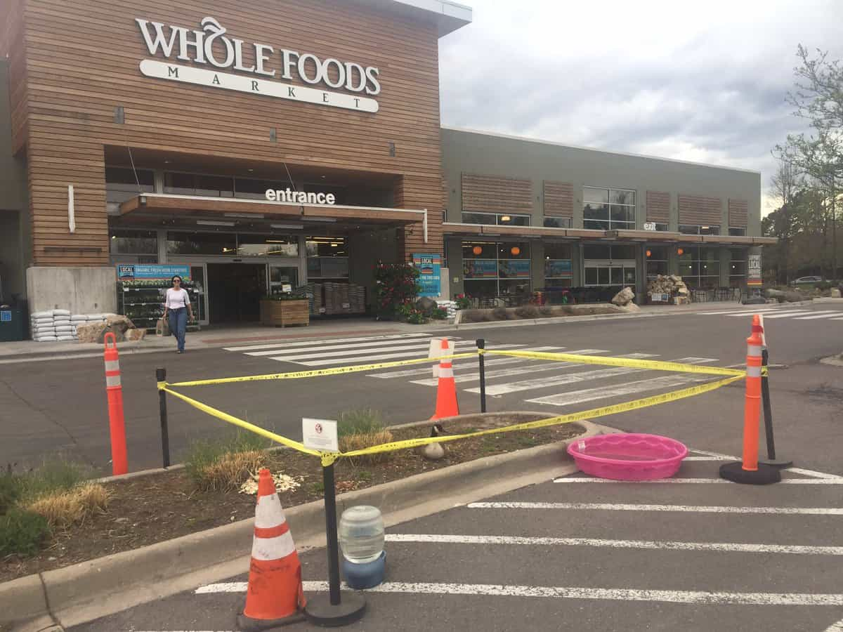 Whole Foods Goose