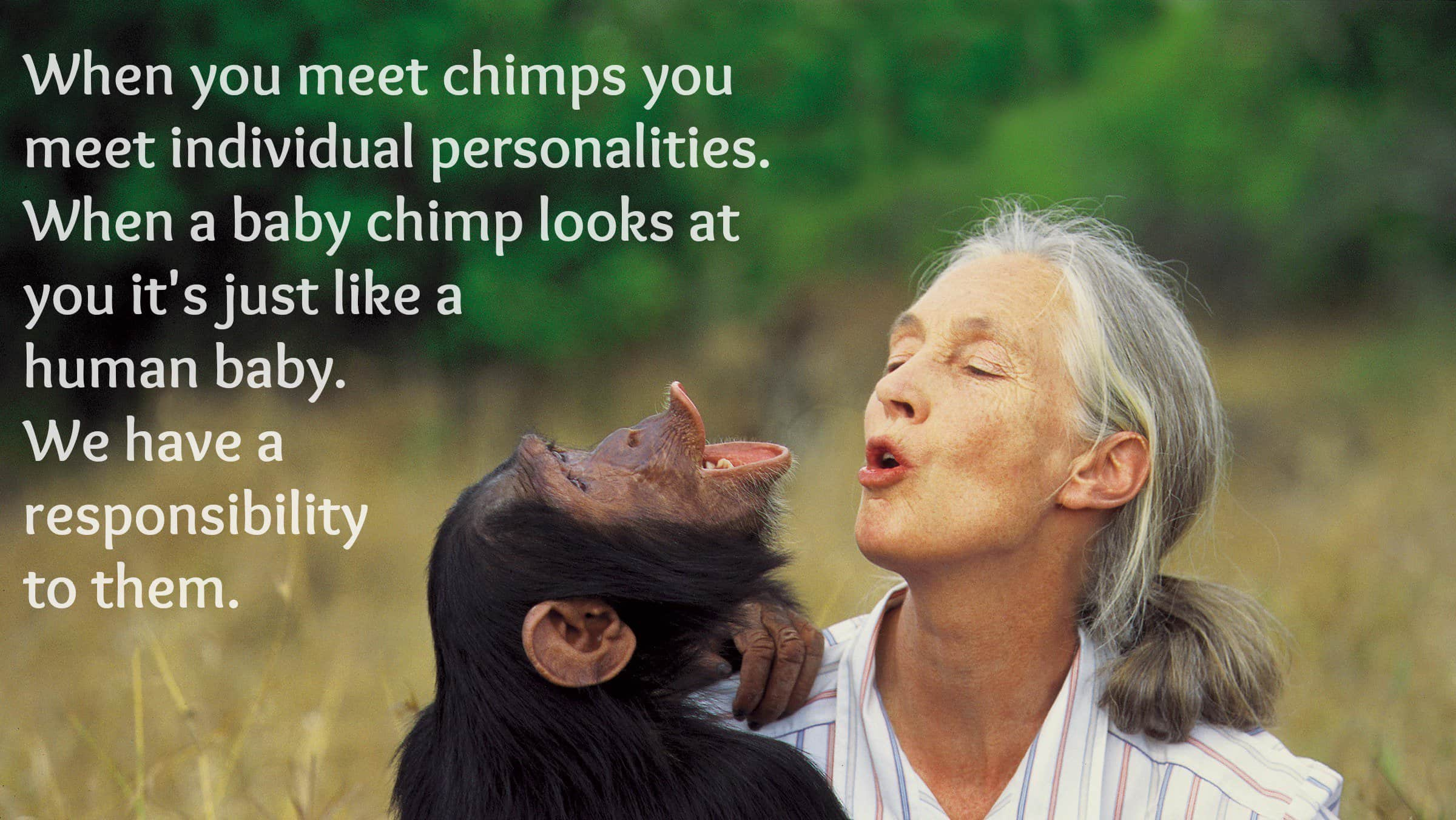Adyashanti Quotes These Jane Goodall Quotes Will Inspire You To Save The World  Awaken