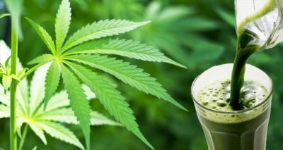 5 Benefits of Juicing Cannabis You Probably Didn't Know About
