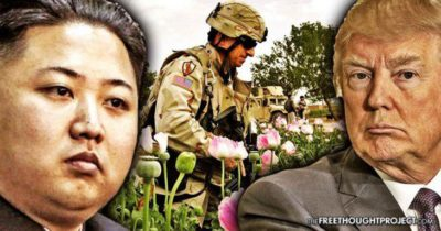 What They Don't Want You To Know: North Korea Is A Large Opium Producer Just Like Afghanistan