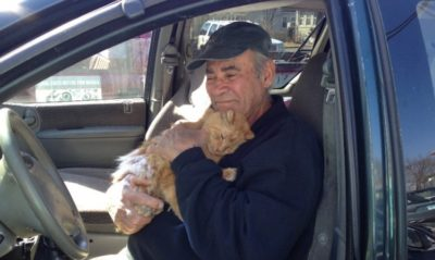 75-Year-Old Activist Has Cared For Feral Cats In Neighborhood For Past 22 Years