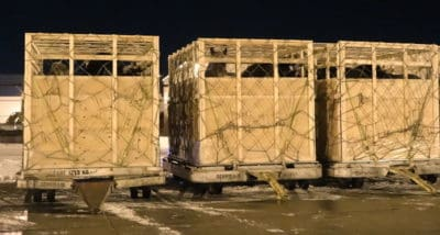 Horses Are Packed Into These Tiny Crates For An Incomprehensible Reason