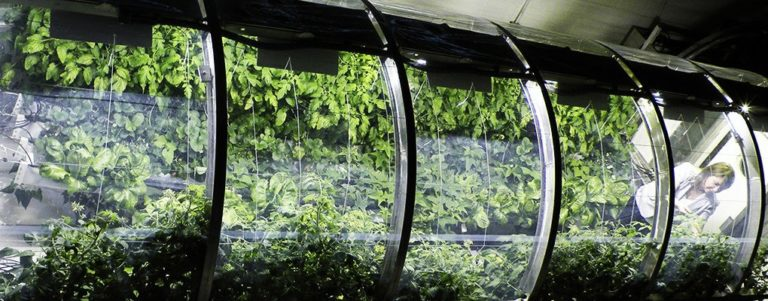 Nasa-Greenhouse-Lead-1020x400-768x301.jpg