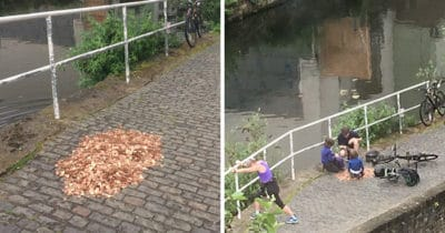 Artist Left 15,000 Pennies On The Ground For A Social Experiment. Watch What Happens…