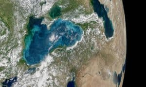 http://www.dailymail.co.uk/sciencetech/article-4606810/Microscopic-organisms-turn-Istanbul-shores-turquoise.html