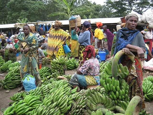 https://commons.wikimedia.org/wiki/Tanzania#/media/File:Tengeru_market.jpg