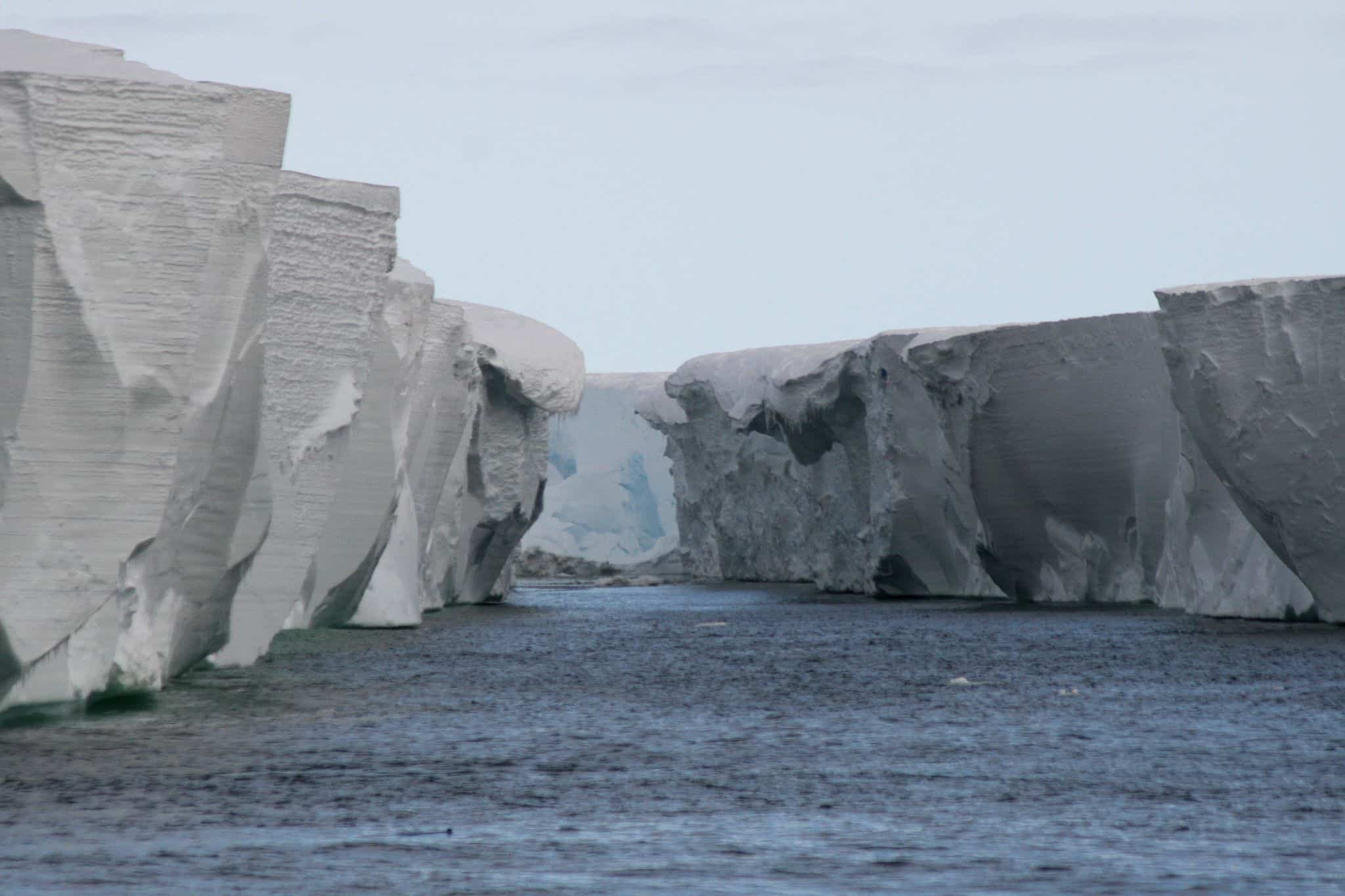 https://commons.wikimedia.org/wiki/File:Ross_Ice-Shelf.jpg