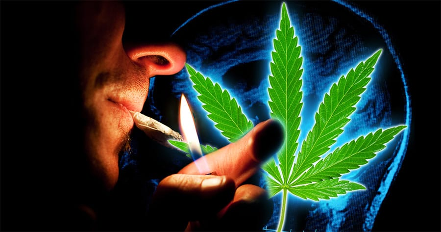 Cannabis For Brain Injury Recovery Seeks Participants