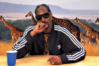 Snoop Dogg Narrating Intense Iguana Chase Scene Is The Best Thing You'll Watch All Day