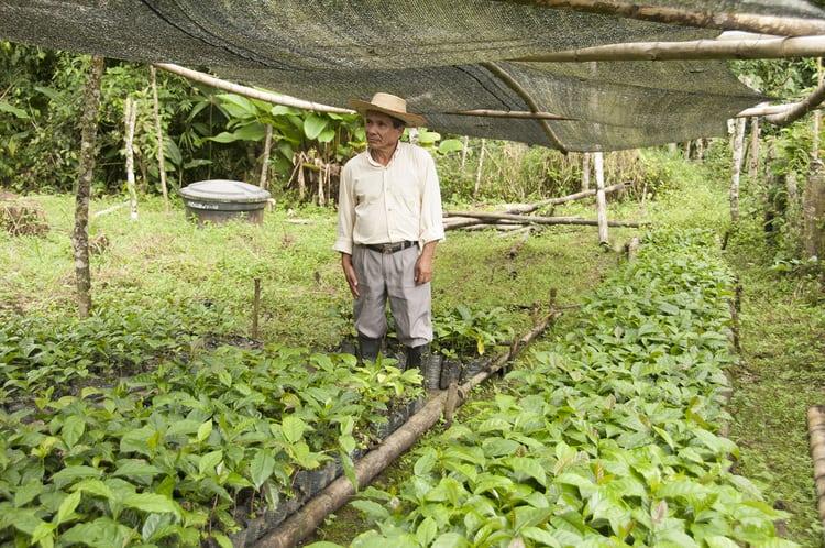 https://levelground.com/farmers/colombia