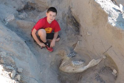 This 10-Year-Old Boy Tripped And Fell—On A 1.2 Million Year Old Fossil