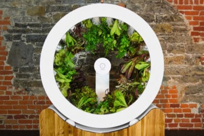 Rotating Indoor Garden Grows 100 Herbs Or Veggies Every Single Month