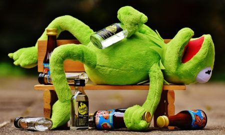 https://pixabay.com/en/kermit-frog-drink-alcohol-drunk-1651325/