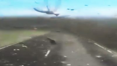 Incredible Footage Shows Driver Speeding Through Millions of Locusts [Watch]