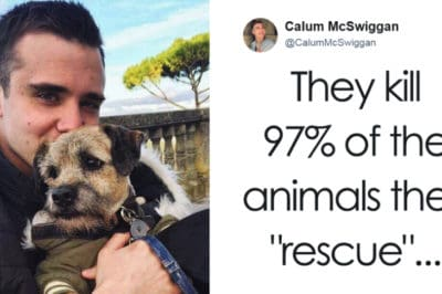 This Vlogger Called Out PETA For How Horrible They Are, And People Are Finally Listening