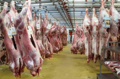 All Slaughterhouses In England To Now Have Mandatory Cameras