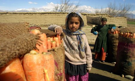 https://pixabay.com/en/afghanistan-children-carrots-crop-79526/