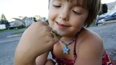 8-Year-Old Girl Who Was Bullied For Loving Bugs Just Authored A Scientific Paper